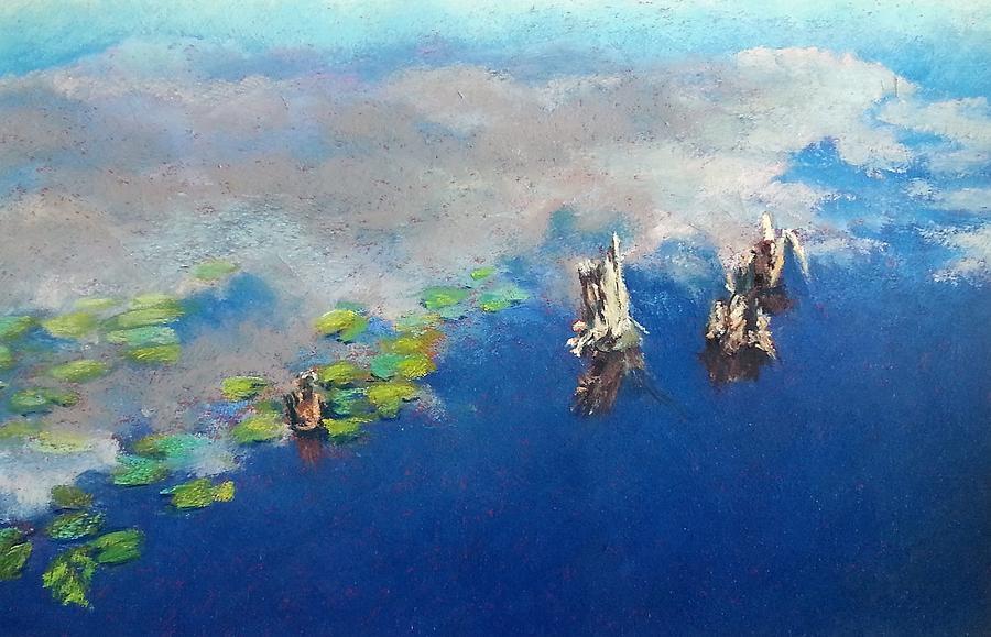 Lily Pond by Diana Colgate