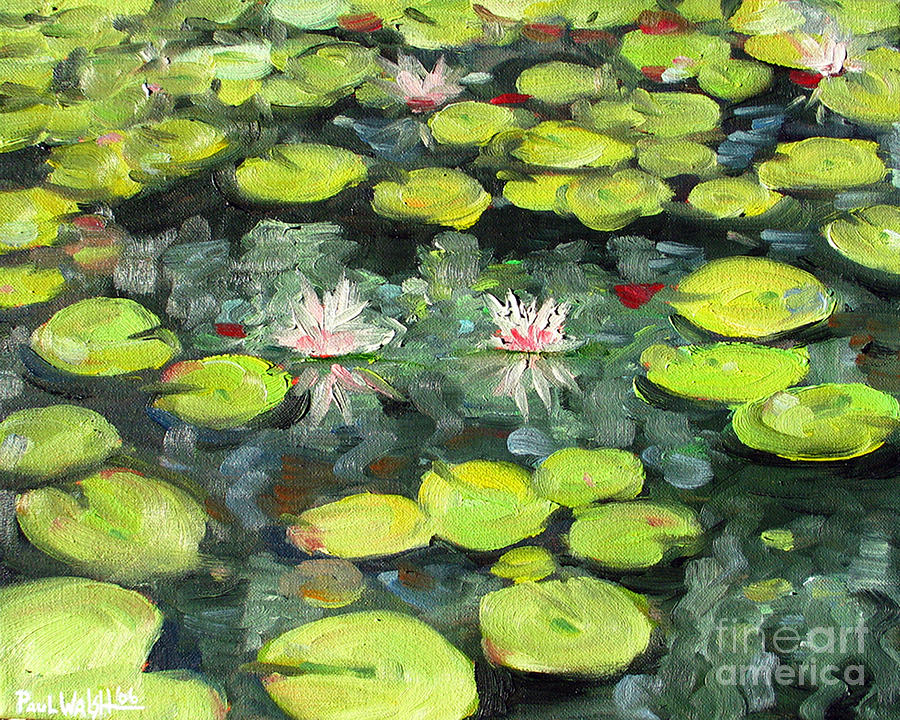 Pond Painting - Lily Pond by Paul Walsh