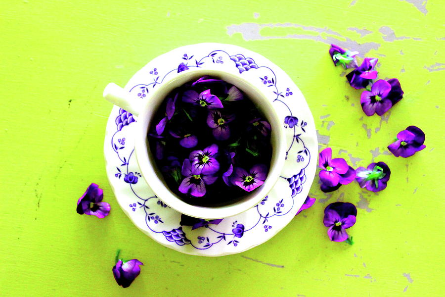Lime Violet Tea Cup by Elizabeth Anne