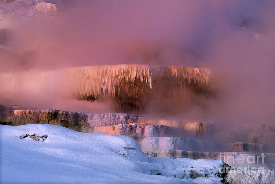 North America Photograph - Limestone Artwork Minerva Springs Yellowstone National Park by Dave Welling