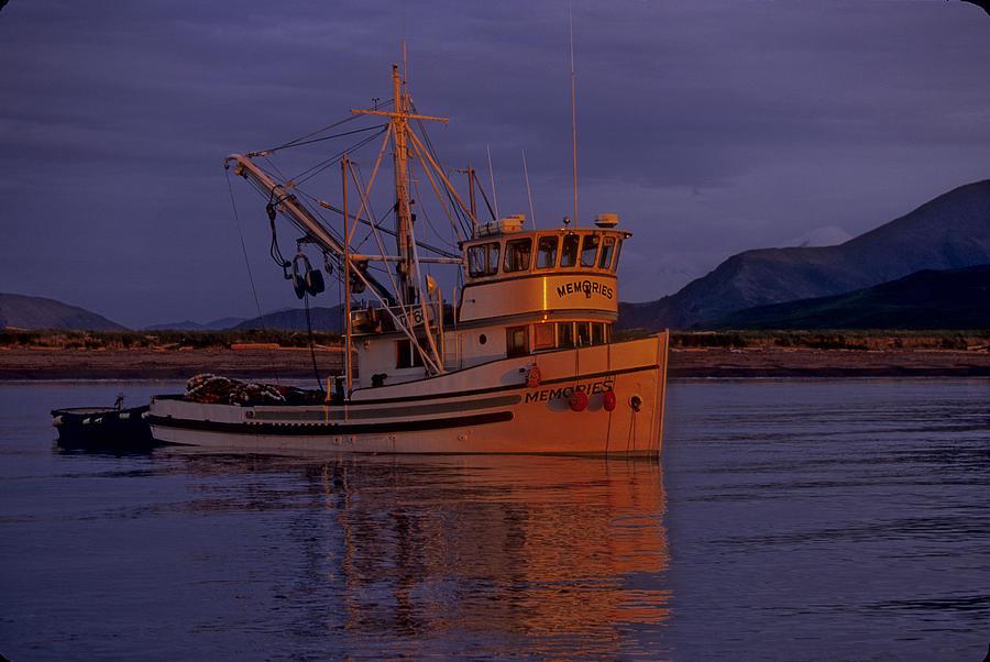 Alaska Photograph - Limit Seiner  by Sam Tyler