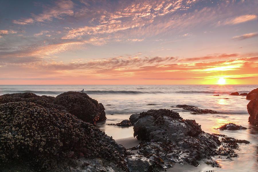 Lincoln City Beach Sunset Oregon Coast Seascape Photograph - Lincoln City Beach Sunset - Oregon Coast by Brian Harig