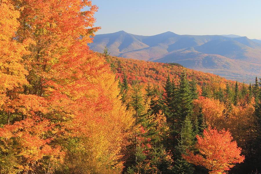 Lincoln Warren Road White Mountains Peak Fall Foliage Photograph