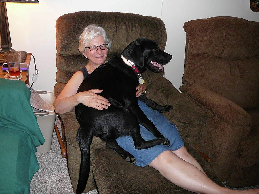 Lindas Lap Dog Photograph by Joe Smiga