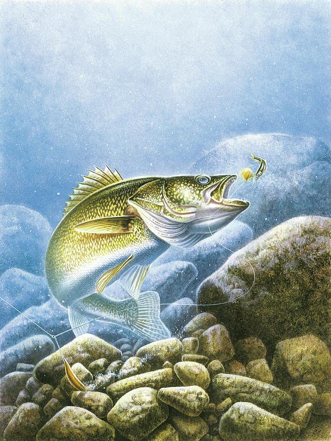 Jon Q Wright Painting - Lindy Walleye by JQ Licensing
