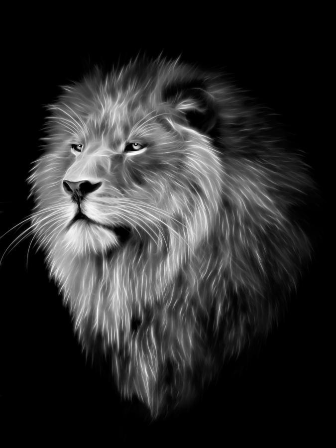 Lion Fractal Digital Art By Julie L Hoddinott