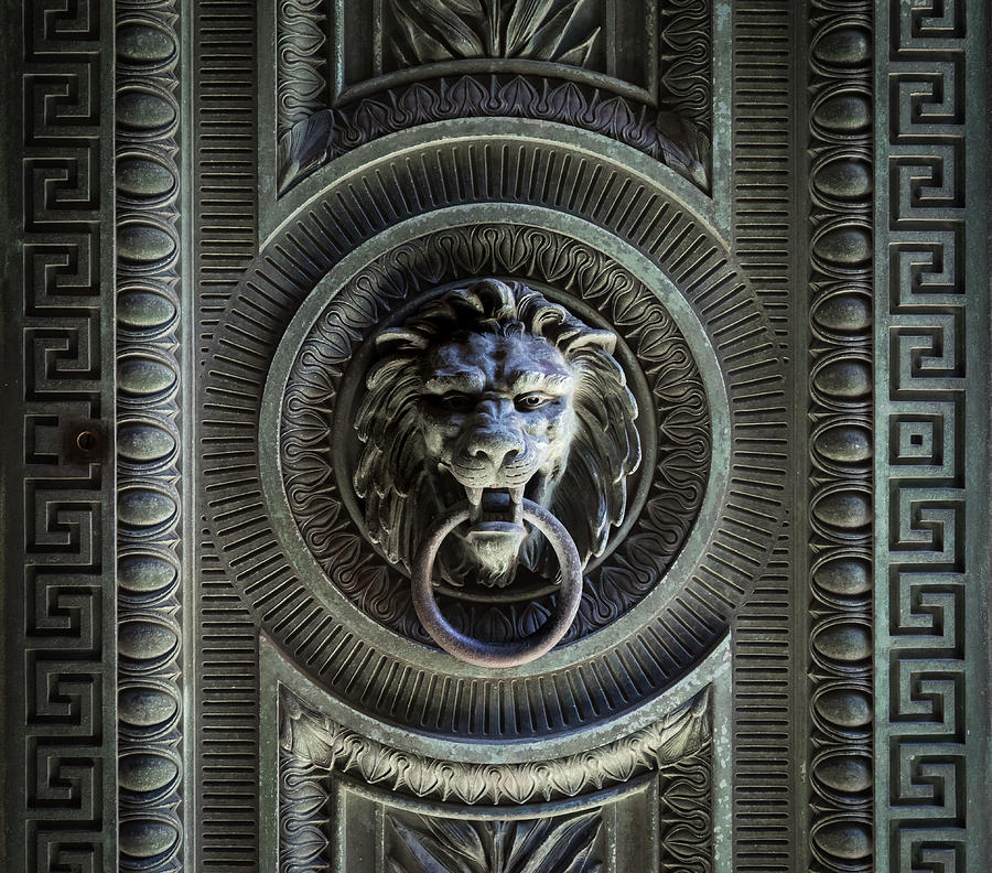 Lion Photograph - The Guardian I by Denise McKay