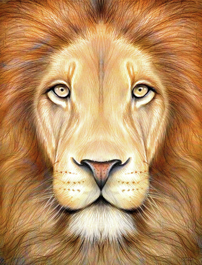 Lion Head In Color Drawing By Greg Joens