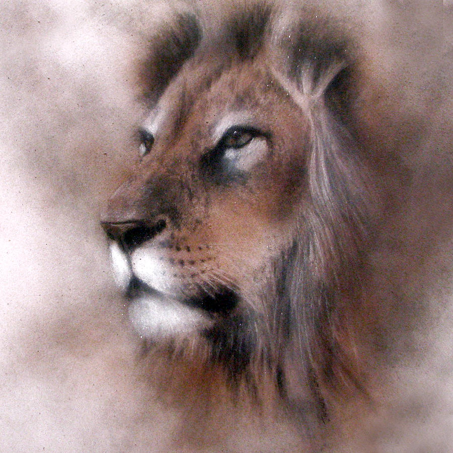 Lion King by Jackie Flaten