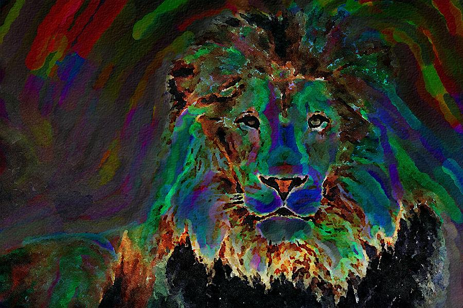 Lion by Mustapha Dazi