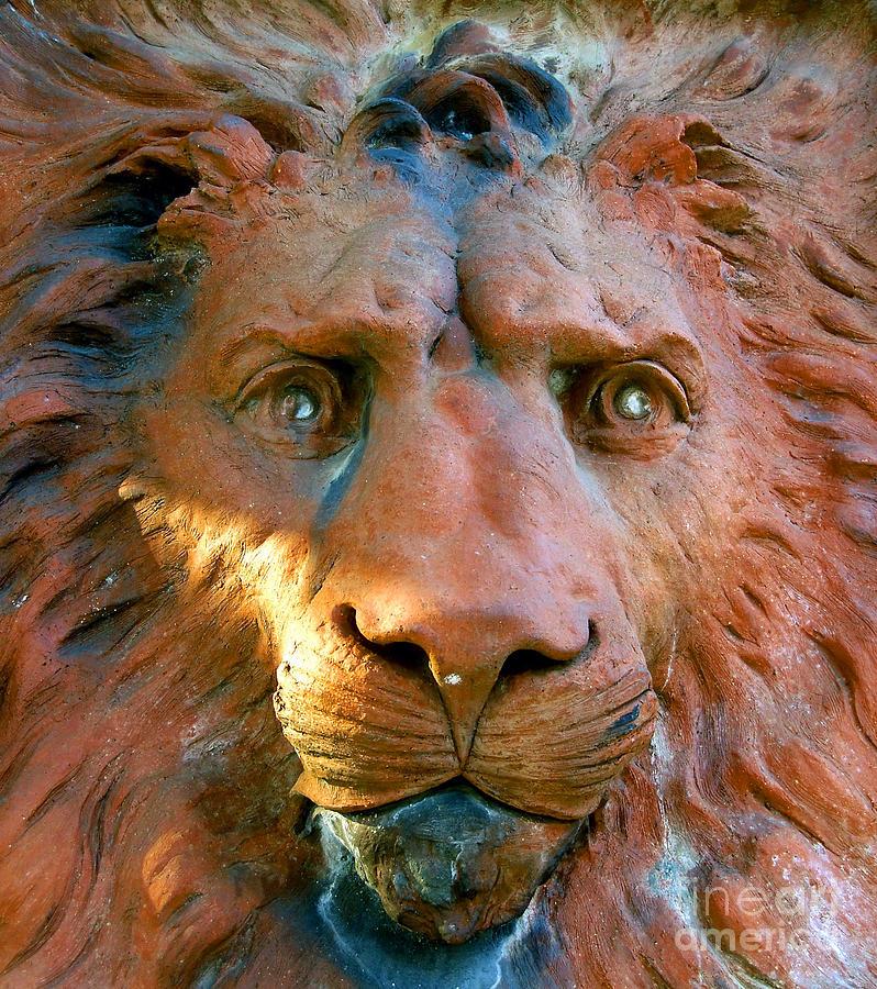 Saint Augustine Florida Photograph - Lion Of Saint Augustine by David Lee Thompson