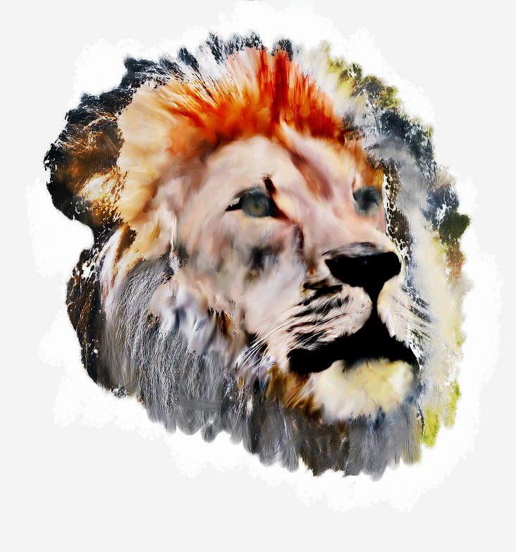Lion Mixed Media - Lion Portrait by GatZ Novikoff