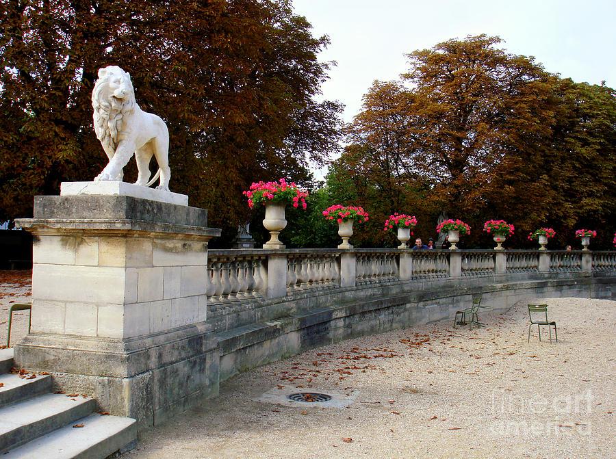 Lion Sculptue Luxembourg Garden Paris France Photograph by Renata