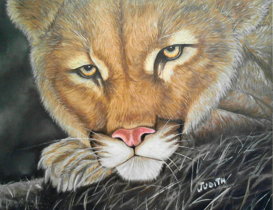 Lion Painting - Lion2 by Judith Perez