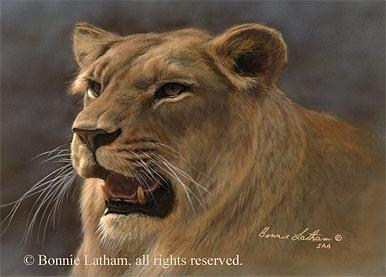 Miniature Painting - Lioness by Bonnie Latham
