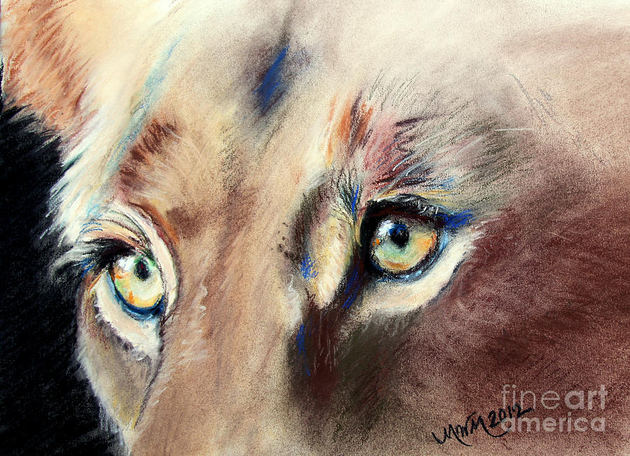 Lioness Eyes by Michelle Wolff