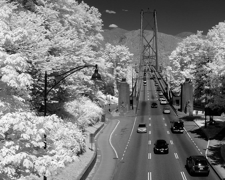 Infrared Photograph - Lions Gate Bridge Summer by Bill Kellett