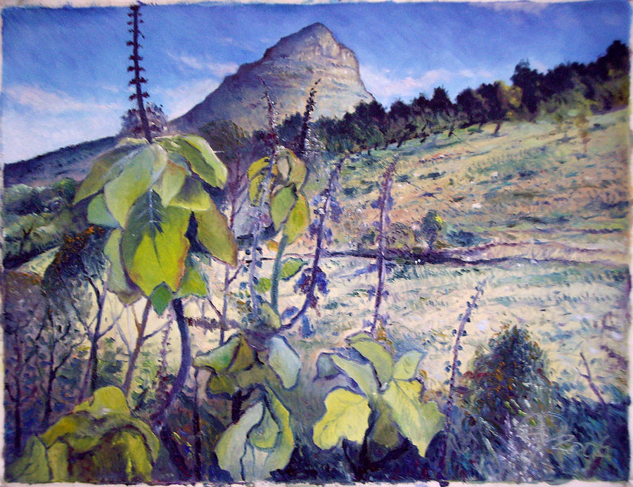 Impressionism Painting - Lions Head From Signal Hill Cape Town  South Africa 2006  by Enver Larney