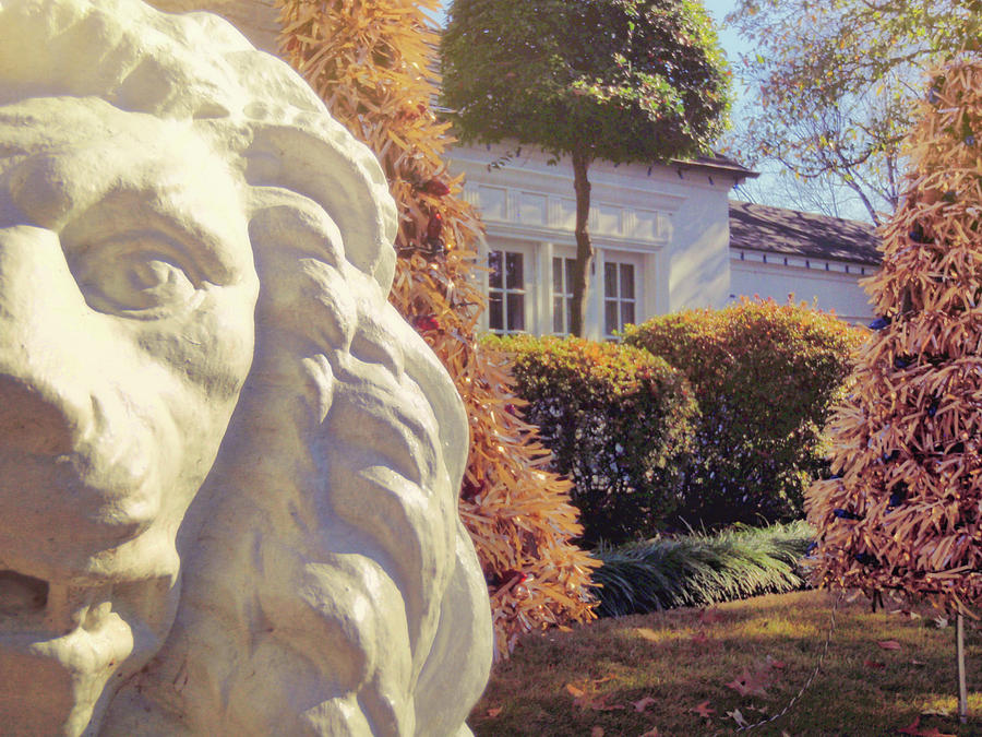 Elvis Photograph - Lions View Of Graceland by JAMART Photography