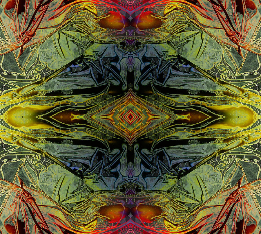 Liquid Decalcomania Mirror Digital Art By Otto Rapp