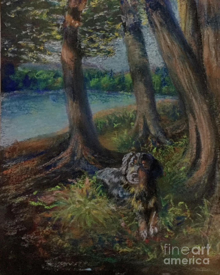 LIstening to the Tales of the Trees by Susan Sarabasha