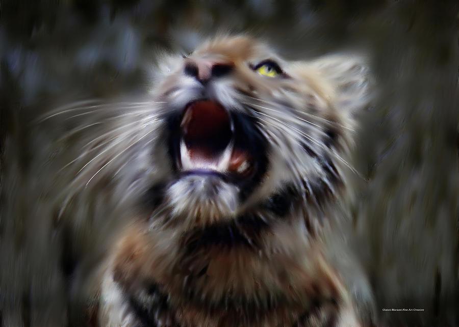 Tiger Digital Art - Litle Tiger by Gianni  Marazzi