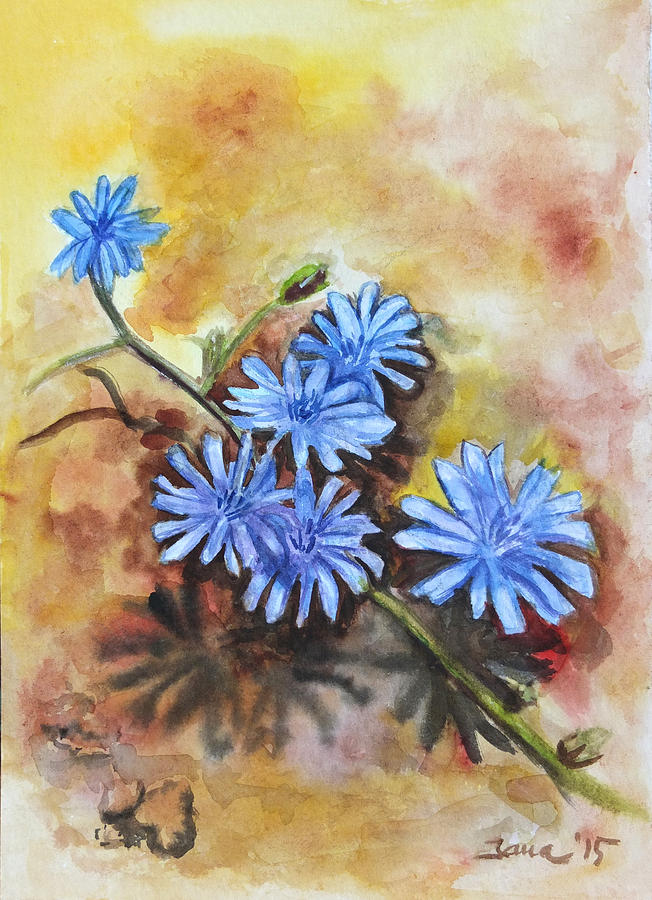 Chicory Painting - Little Blues by Jana Goode