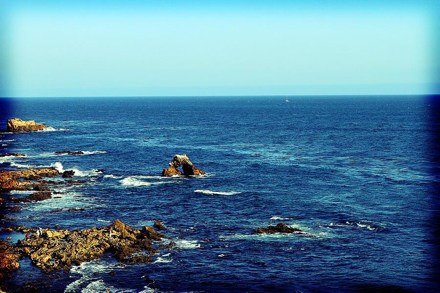 Corona Del Mar Photograph - Little Corona by Ariane Moshayedi