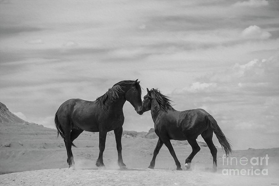 Nikon Photograph - Little Dance by Nicole Markmann Nelson