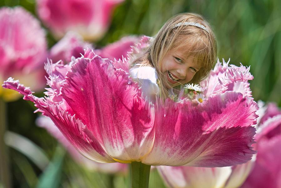 Tulip Photograph - Little Dutch Girl by Maria Dryfhout