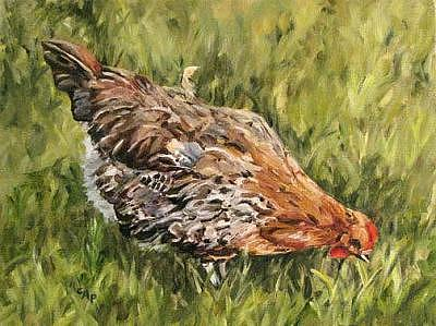 Chicken Painting - Little French Hen by Cheryl Pass