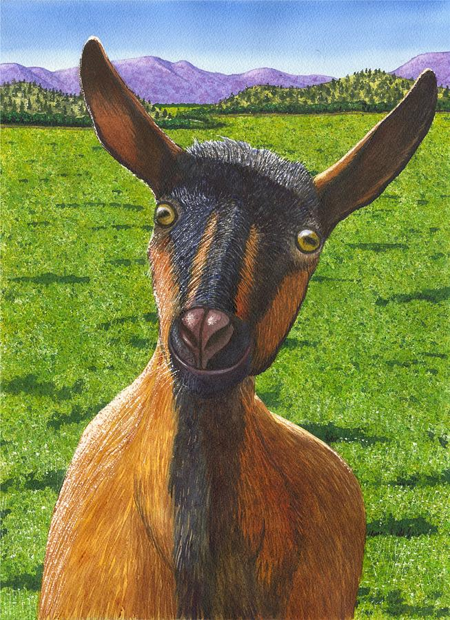 Goat Painting - Little Goat by Catherine G McElroy