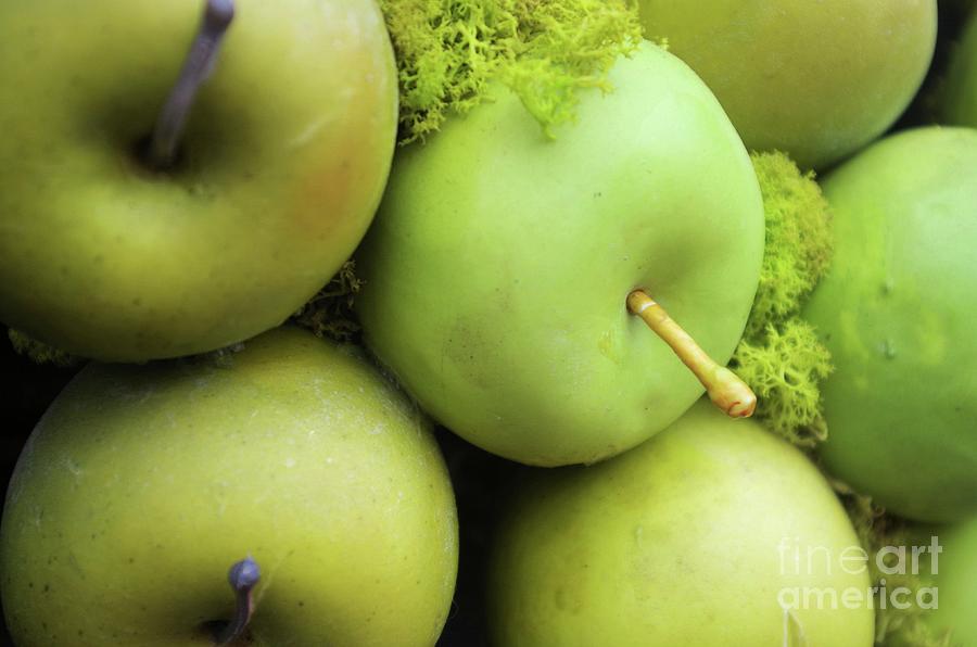Little Green Apples Photograph