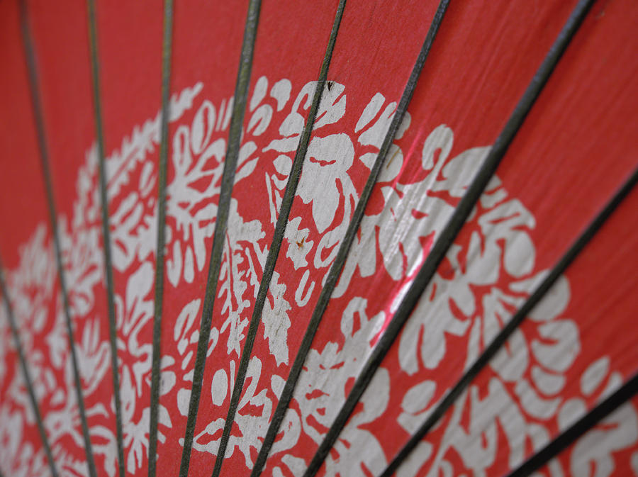 Little Japonism by Rachel Mirror