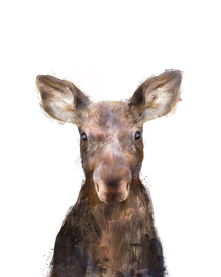 Moose Painting - Little Moose by Amy Hamilton