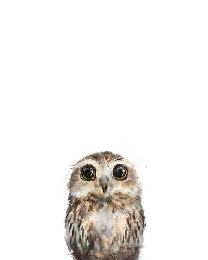 Owl Painting - Little Owl by Amy Hamilton