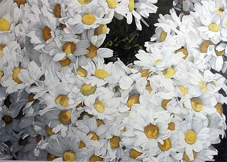Flowers Drawing - Little Ox-eyed Daisies by Henny Adank