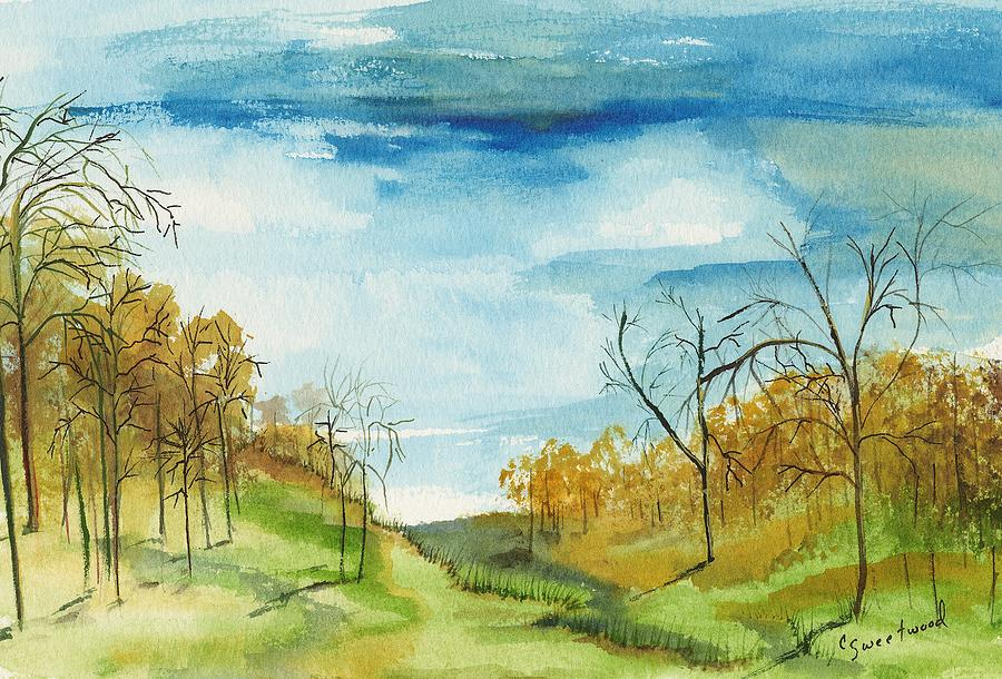 Watercolor Painting - Little Path by Carol Sweetwood