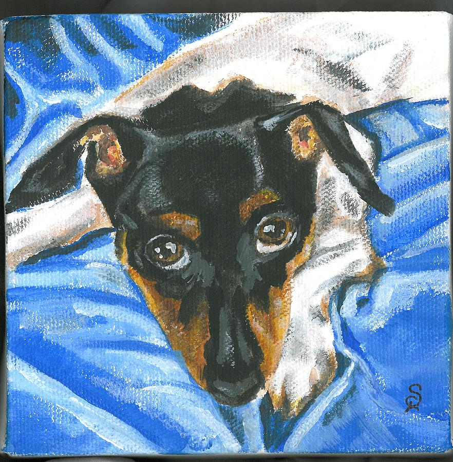 Little Rat Terrier by Sarah Lowe