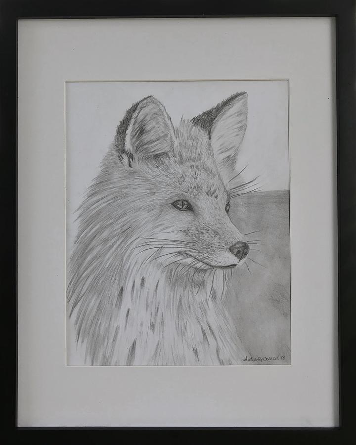 Red Fox Drawing - Little Red Fox by Amber Nation