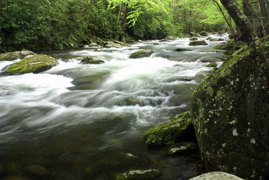 Little River Photograph - Little River 3 by Marty Koch