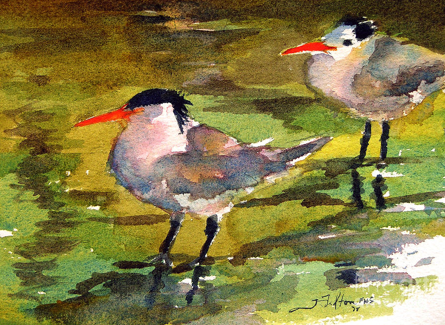Seabirds Painting - Little Terns by Julianne Felton