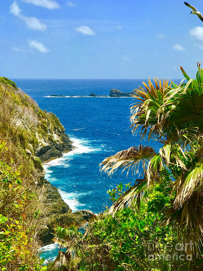 Little Tobago Photograph