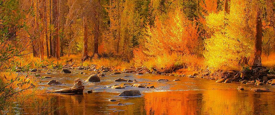 Little Truckee River by Sherri Meyer