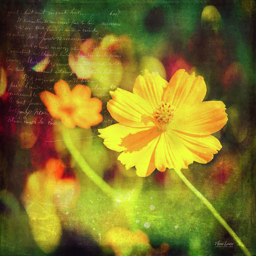 Little Yellow Flowers by Anna Louise