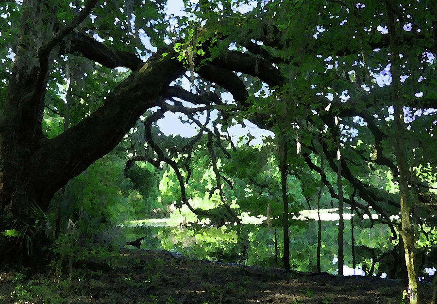 Live Oak Digital Art - Live Oak Hidden Pond by Marnie Hutcheson