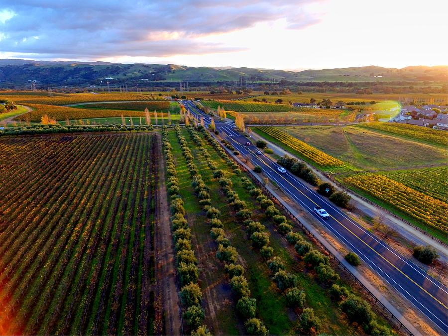 Winery Photograph - Livermore Wine Country--las Positas Winery by John King