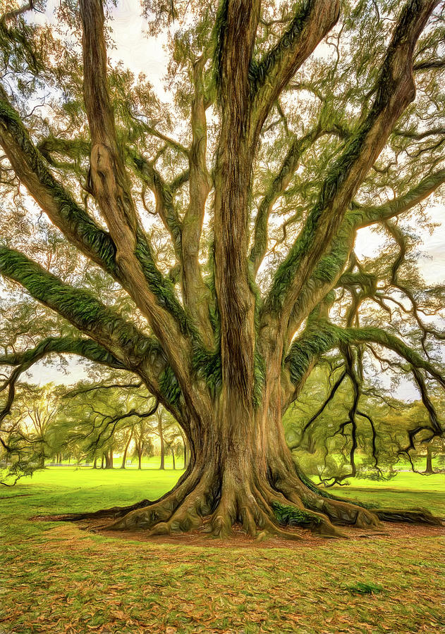 Oak Alley Plantation Photograph - Living History - Paint by Steve Harrington