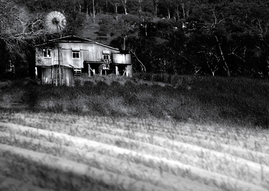 Landscapes Photograph - Living On The Land by Holly Kempe