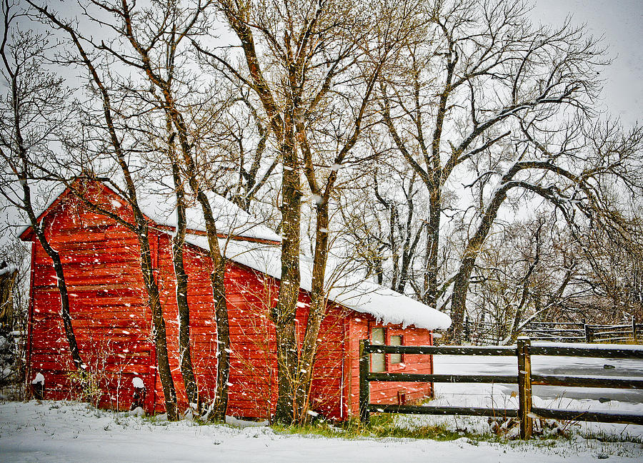 Americana Photograph - Loafing Shed by Marilyn Hunt
